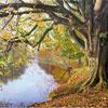"""Puzzle en bois Wentworth """"Automne sur la rivière Wharfe"""" - Keith Melling 250 pièces"""