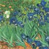 Les Iris - Van Gogh - puzzle Michèle Wilson 500 pièces