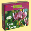 Mémo Nature Fleurs et Plantes